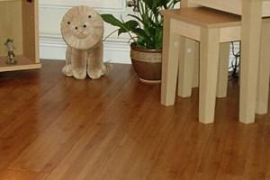 bamboo-flooring-thumb